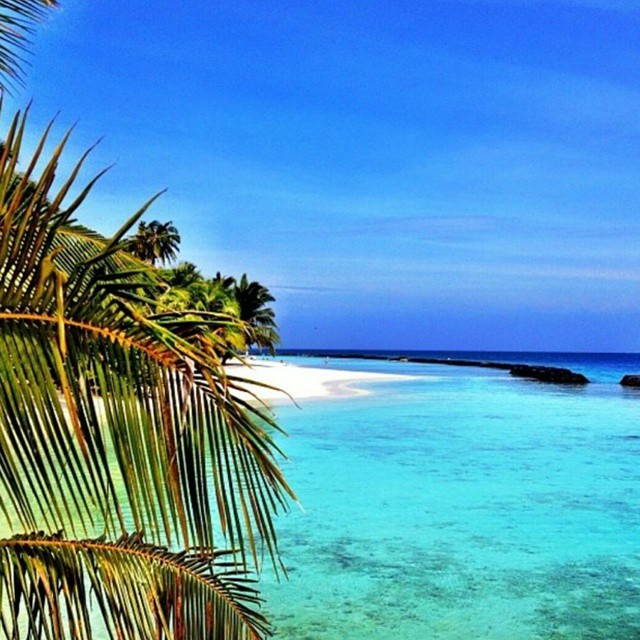 Day dreaming#Maldives #beach #sun #summer #playa #summertime #daydreaming #dreaming #water #paradise #mar #verano #buenosdias #paraiso