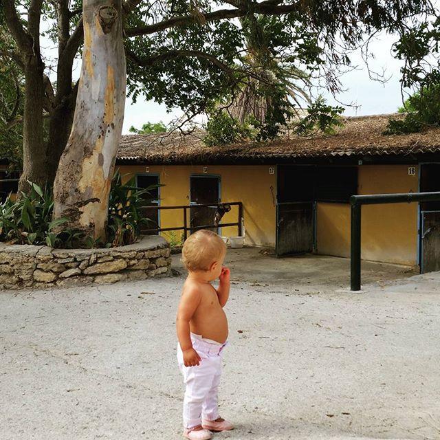 Ultimos coletazos del verano.#paseos #familia #hipica #caballos #cortijo #andalucia #sur #amordemadre