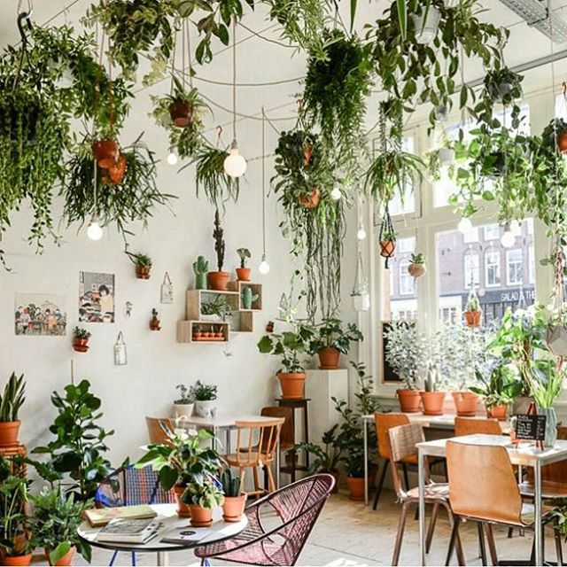 @sniffthebean#cafe #spot #plants #deco #cool #nordic #design